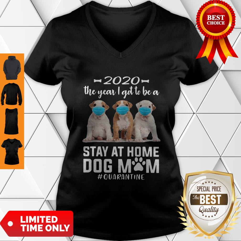 Good 2020 The Year I Got To Be A Stay At Home Pit Bull Dog Mom Quarantine V-neck