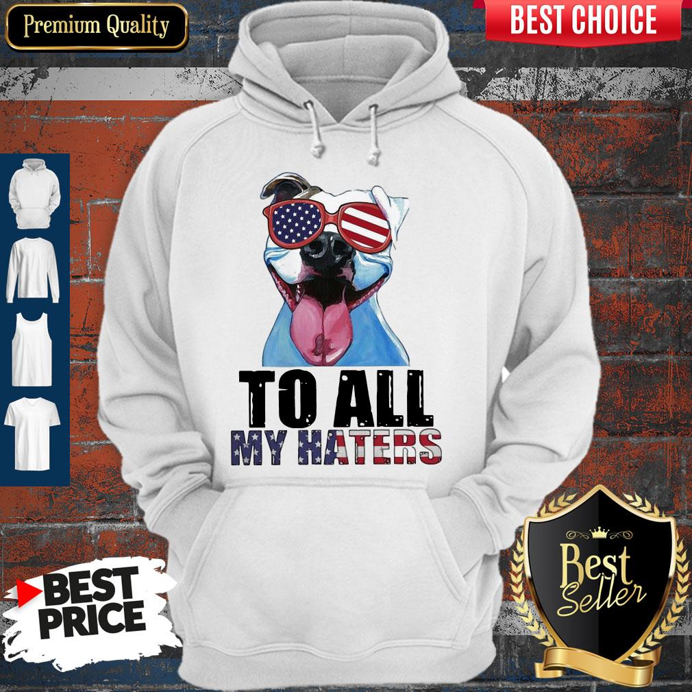 Awesome To My Haters Pitbull American Flag Hoodie