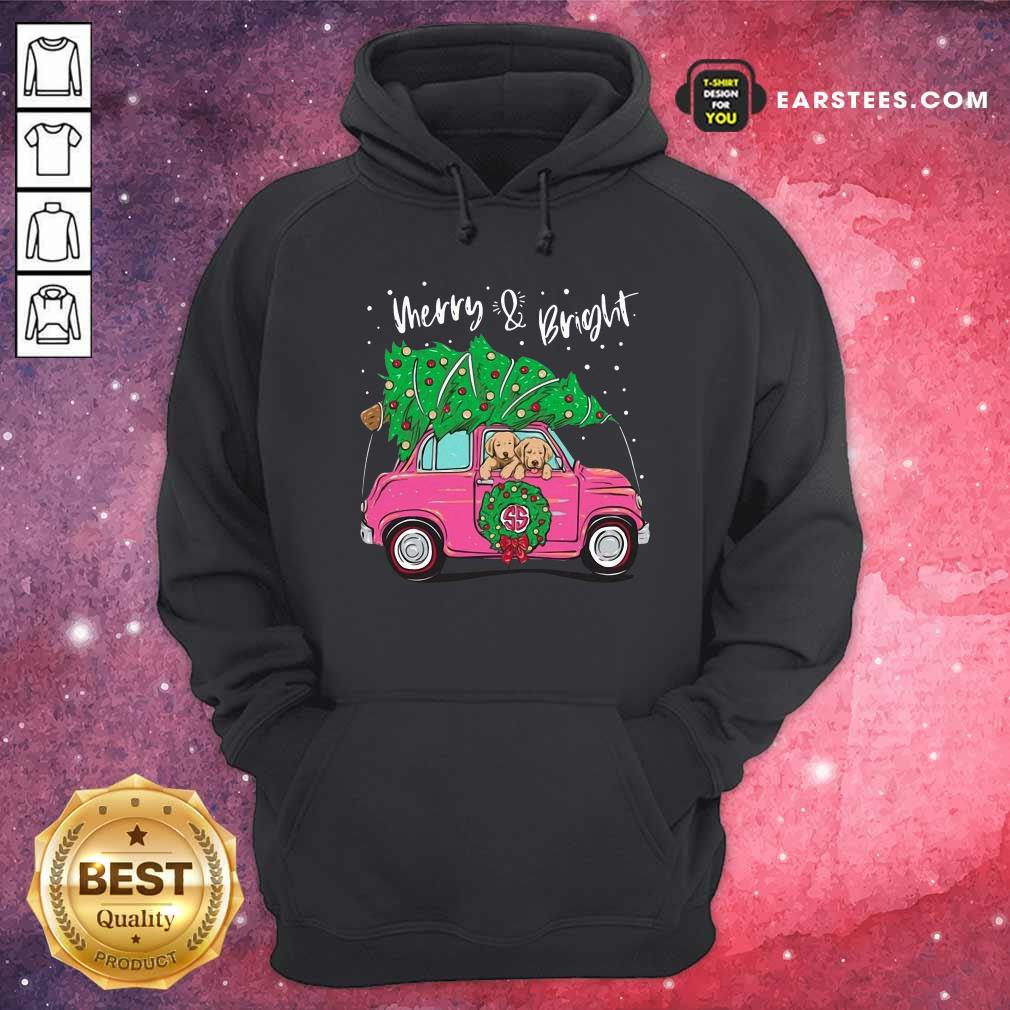 Merry And Bright Pitbull Dog Ugly Christmas Hoodie - Design By Earstees.com