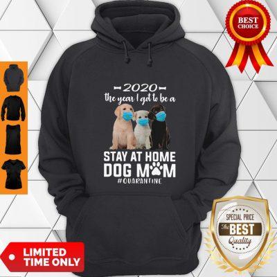 Awesome 2020 The Year I Got To Be A Stay At Home Labrador Retriever Dog Mom Quarantine Hoodie