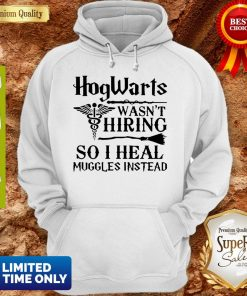 Nurse Hogwarts Wasn't Hiring So I Heal Muggles Instead Hoodie