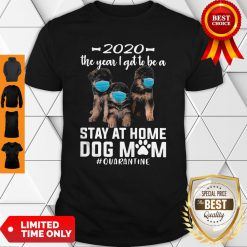 Nice 2020 The Year I Got To Be A Stay At Home Companion Dog Mom Quarantine Shirt