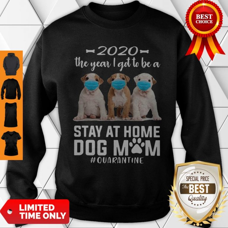 Good 2020 The Year I Got To Be A Stay At Home Pit Bull Dog Mom Quarantine Sweatshirt