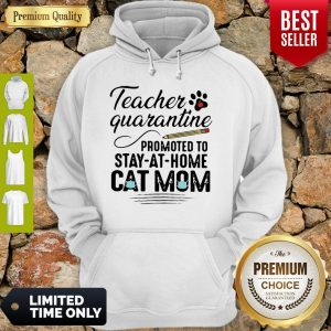 Teacher Quarantine Promoted To Stay At Home Cat Mom Hoodie