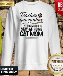 Teacher Quarantine Promoted To Stay At Home Cat Mom Sweatshirt