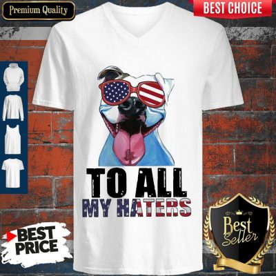 Awesome To My Haters Pitbull American Flag V-neck