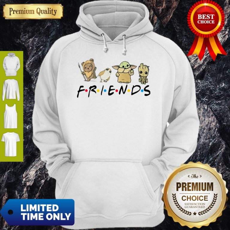 Pretty Pooh Penguin Baby Yoda Baby Groot Friends TV Show Hoodie