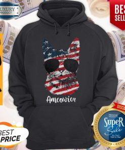 Good Ameowica Cat American Flag Hoodie