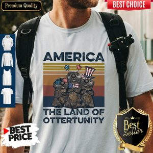 Pretty America The Land Of Otter Unity Independence Day Vintage Shirt