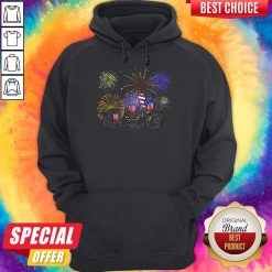 Pretty Night Fury American Flag 4th Of July Independence Day Hoodie