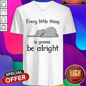 Top Elephant Every Little Thing Is Gonna Be Alright V-neck