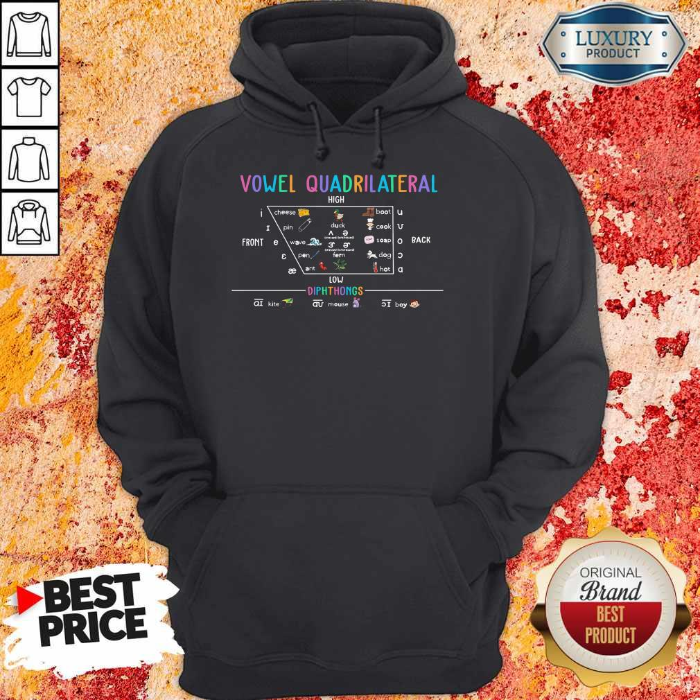 Awesome Vowel Quadrilateral High Front Back Low Diphthongs Back To School Hoodie