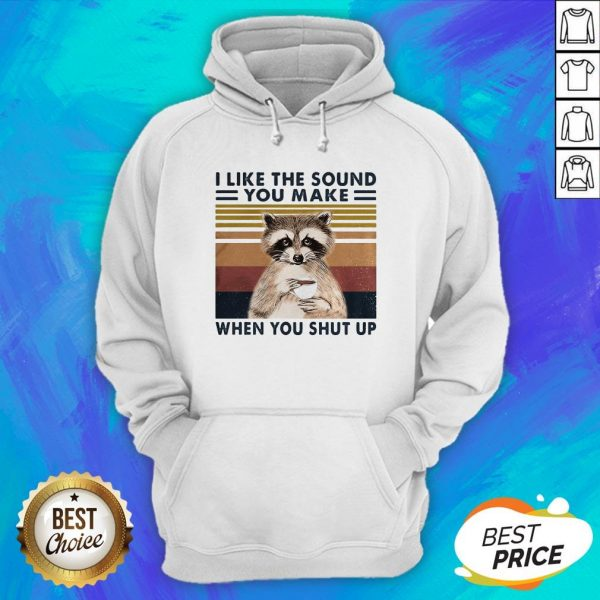 Raccoon I Like The Sound You Make When You Shut Up Vintage Retro Hoodie