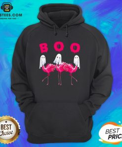Funny Flamingo Boo Happy Halloween Hoodie