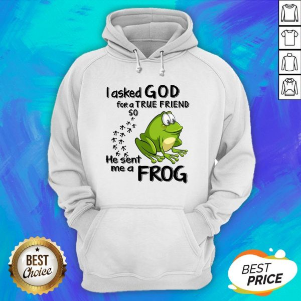 I Asked God For True Friend So He Sent Me A Frog Hoodie