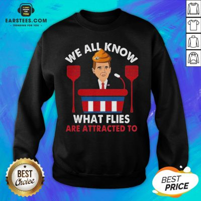 We All Know What Flies Are Attracted To Funny Pence 2020 VP Debate Sweatshirt - Design By Earstees.com