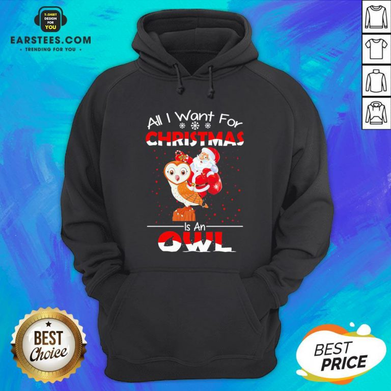 Funny Santa All I Want For Christmas Is An Owl Sweater Hoodie - Design By Earstees.com