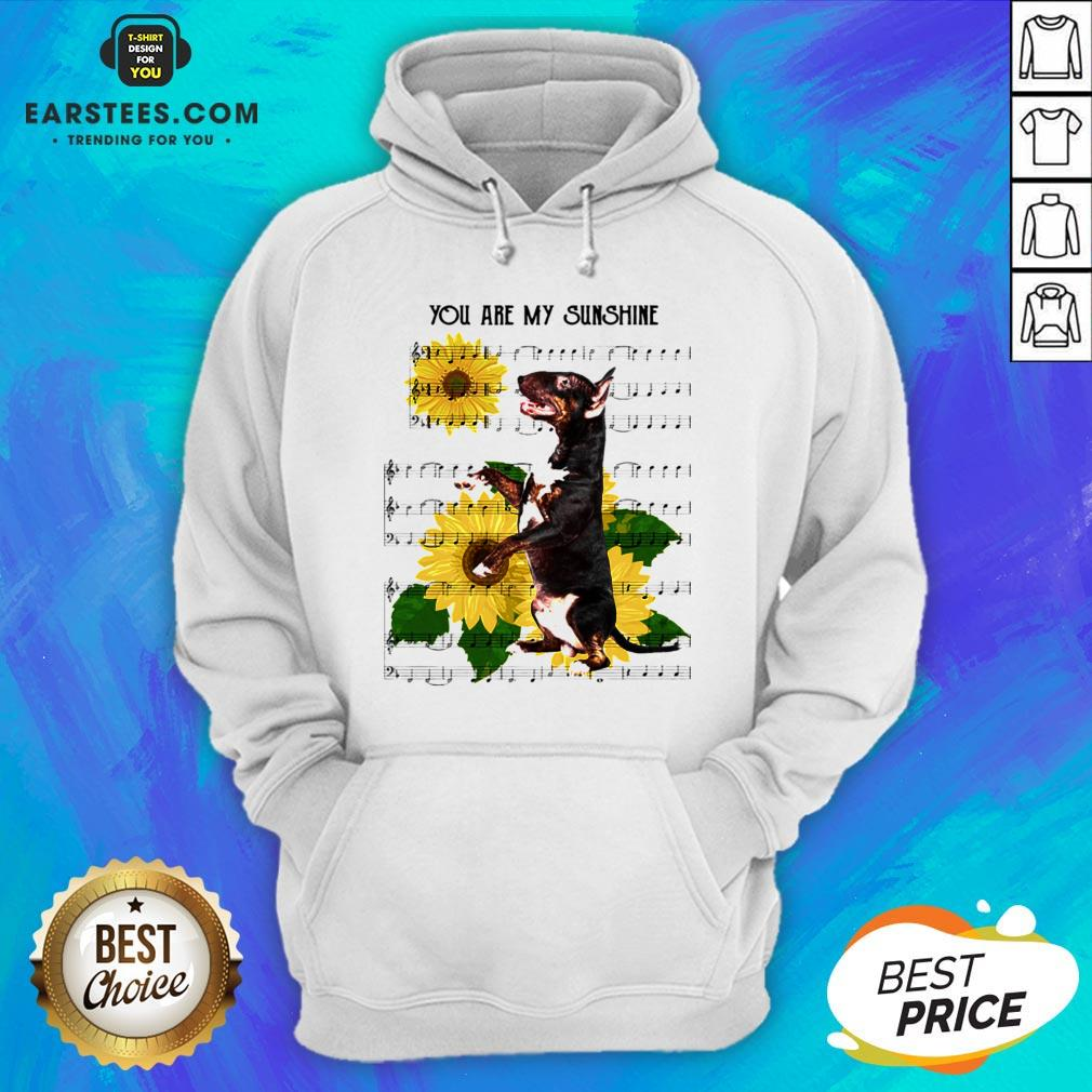 Nice Bull Terrier You Are My Sunshine Hoodie - Design By Earstees.com