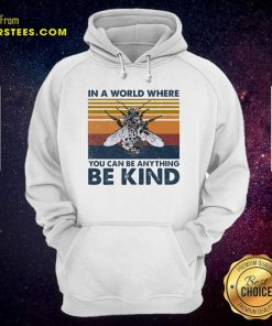In A World Where You Can Be Anything Be Kind Vintage Hoodie - Design By Earstees.com