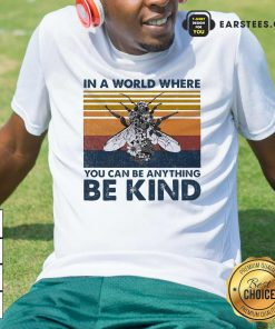 In A World Where You Can Be Anything Be Kind Vintage Shirt - Design By Earstees.com