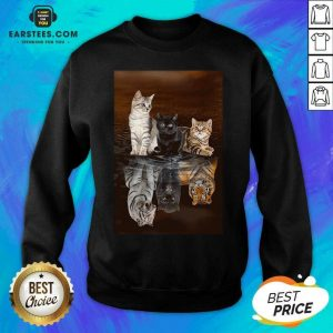 Awesome Three Cat Tiger Reflections 5d Diamond Diy Sweatshirt - Design By Earstees.com