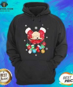 Hot Golden Retriever Warm Wishes Socks Christmas Hoodie - Design By Earstees.com