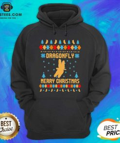 Nice Dragonfly Merry Ugly Christmas Hoodie - Design By Earstees.com
