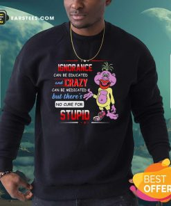 Ignorance Can Be Educated And Zrazy Can Be Medicated But Theres No Cure For Stupid Sweatshirt- Design By Earstees.com