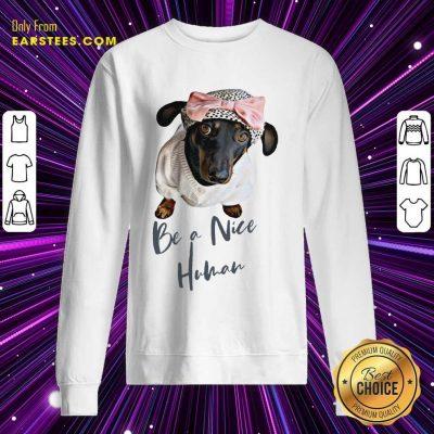 Excellent Dachshund Be A Nice Human Dog Sweatshirt