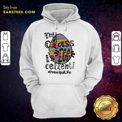 Perfect Principal Life My Class Is Egg Cellent Hoodie