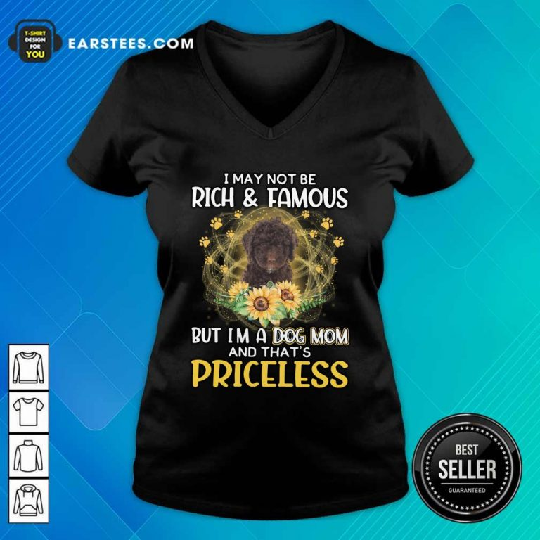 Top Spanish Water I May Not Be Rich And Famous But I'm A Dog Mom And That's Priceless V-neck