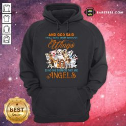 Nice Wings Dog And God Said Angels Hoodie
