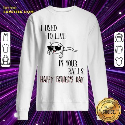 Top I Used To Live In Your Balls Happy Father's Day Sweatshirt